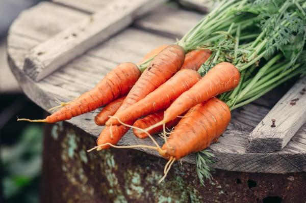 organic-carrots-farm-food-2021-04-02-22-59-27-utc